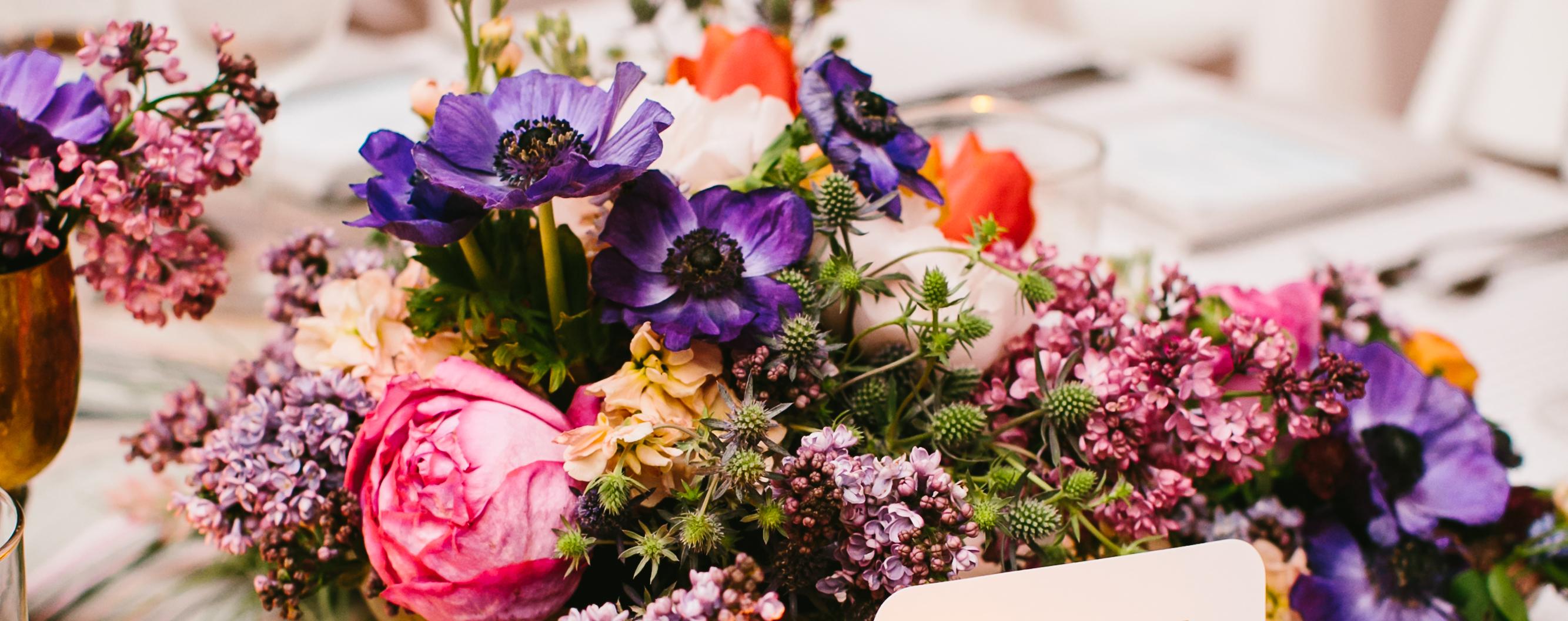 Jayne Weddings - Jayne Weddings