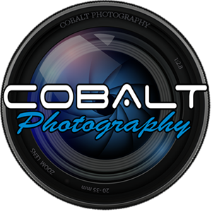Modern Colorful Grand Opening Gala - Cobalt Photography
