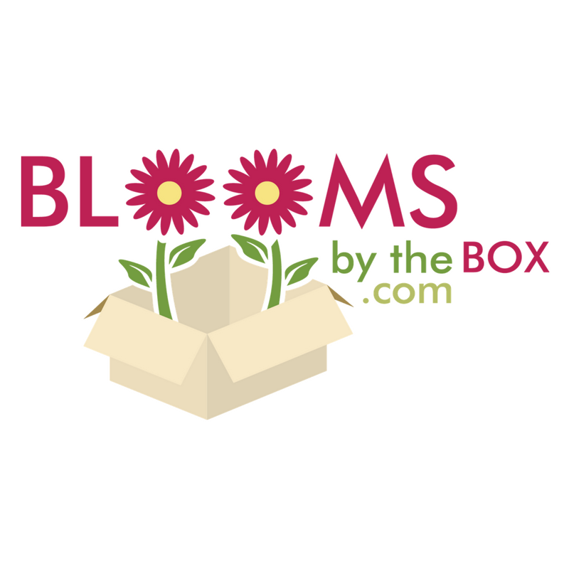 BloomsByTheBox - BloomsByTheBox