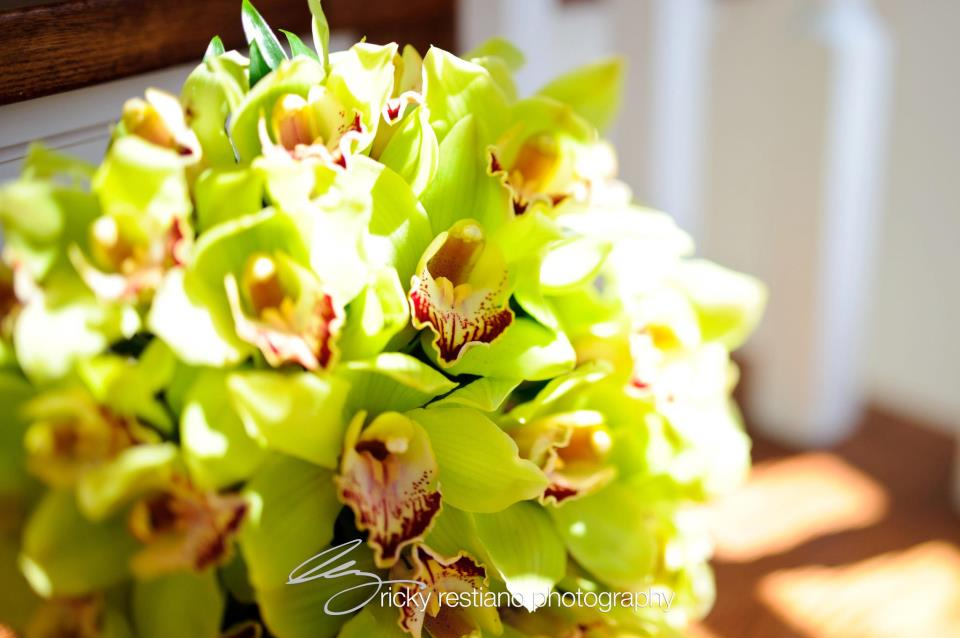Westchester Floral Decorators - Westchester Floral Decorators