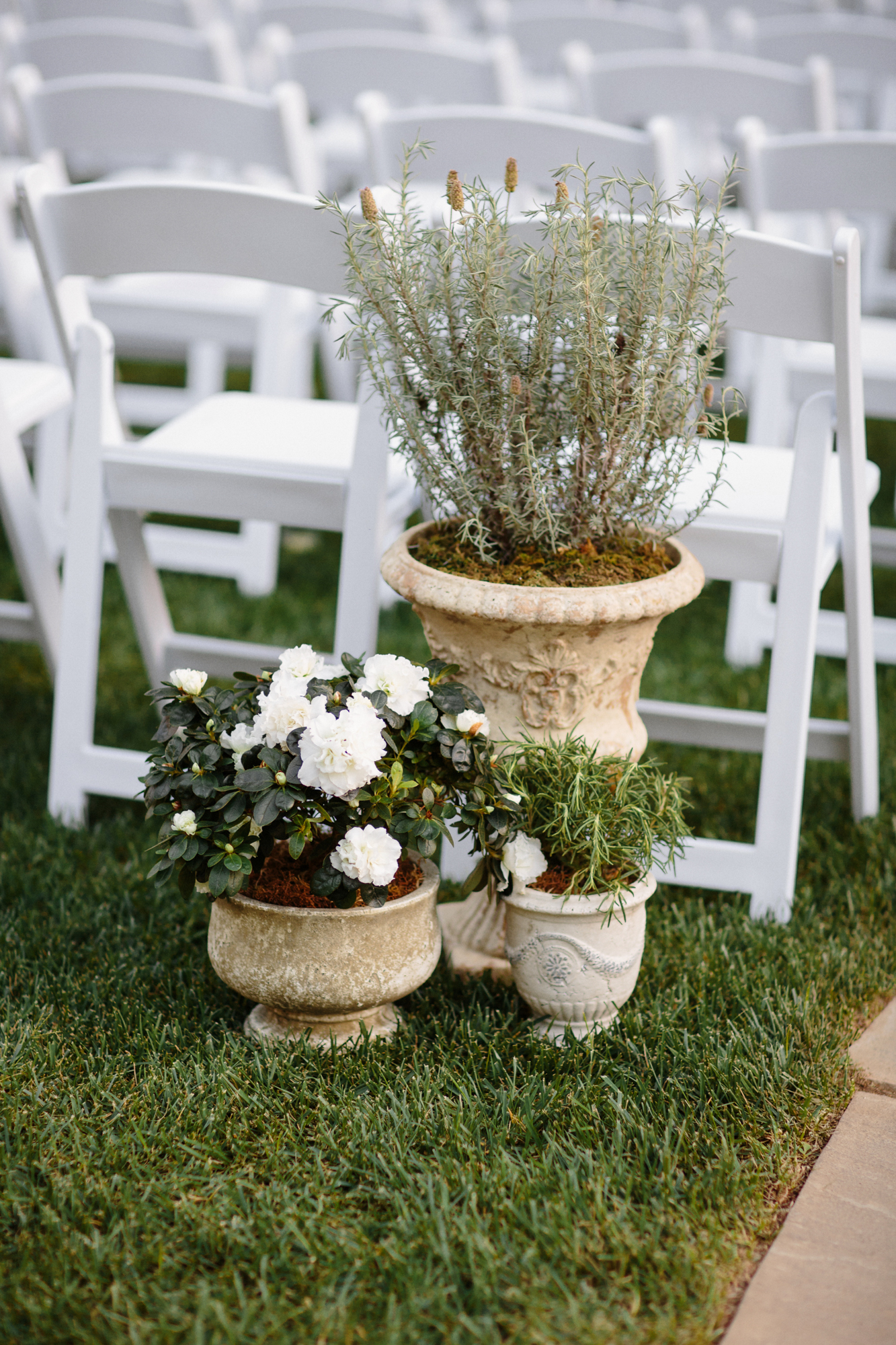 Outdoor California Ceremony with Timeless Reception - Olive Willow Designs