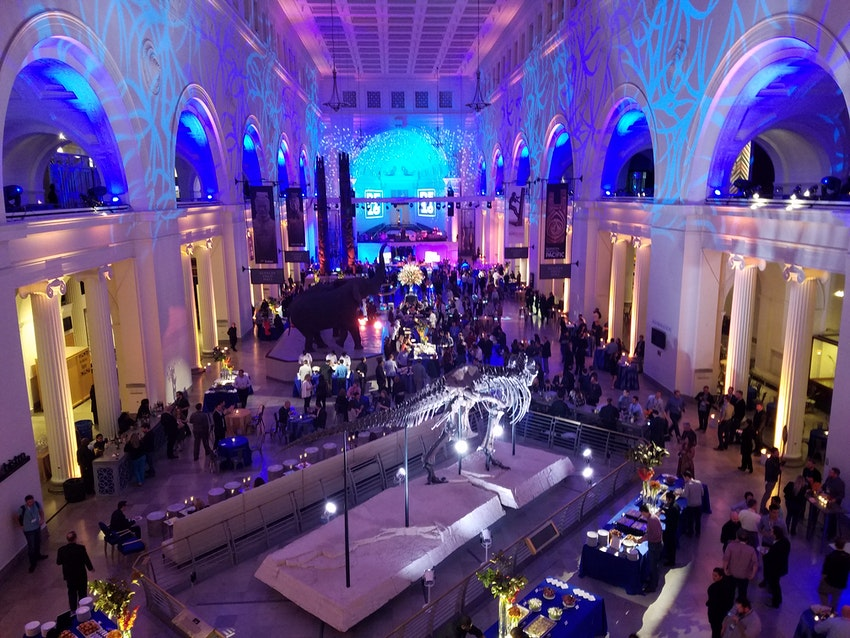 2016 Relativity Fest Networking Reception at Chicago's Field Museum