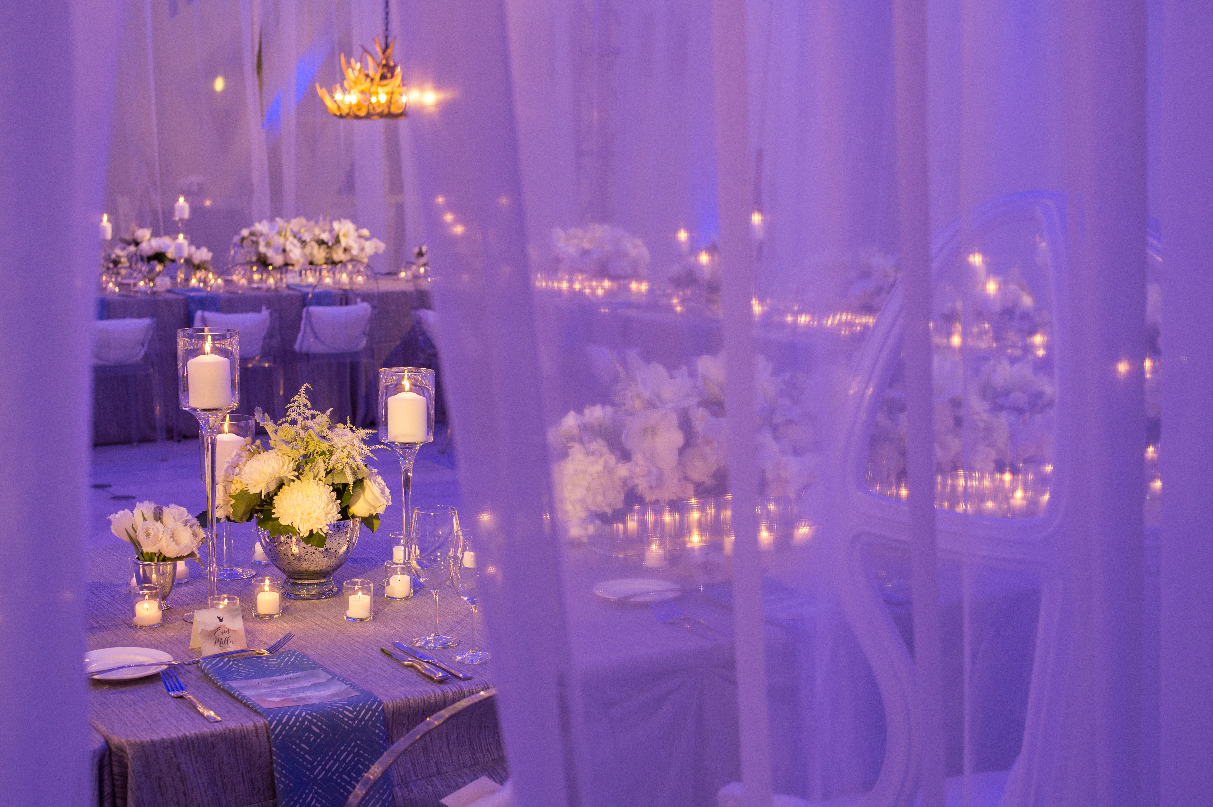 White Sheer created a soft, intimate setting at the Milwaukee Art Museum for this fabulous Winter wedding