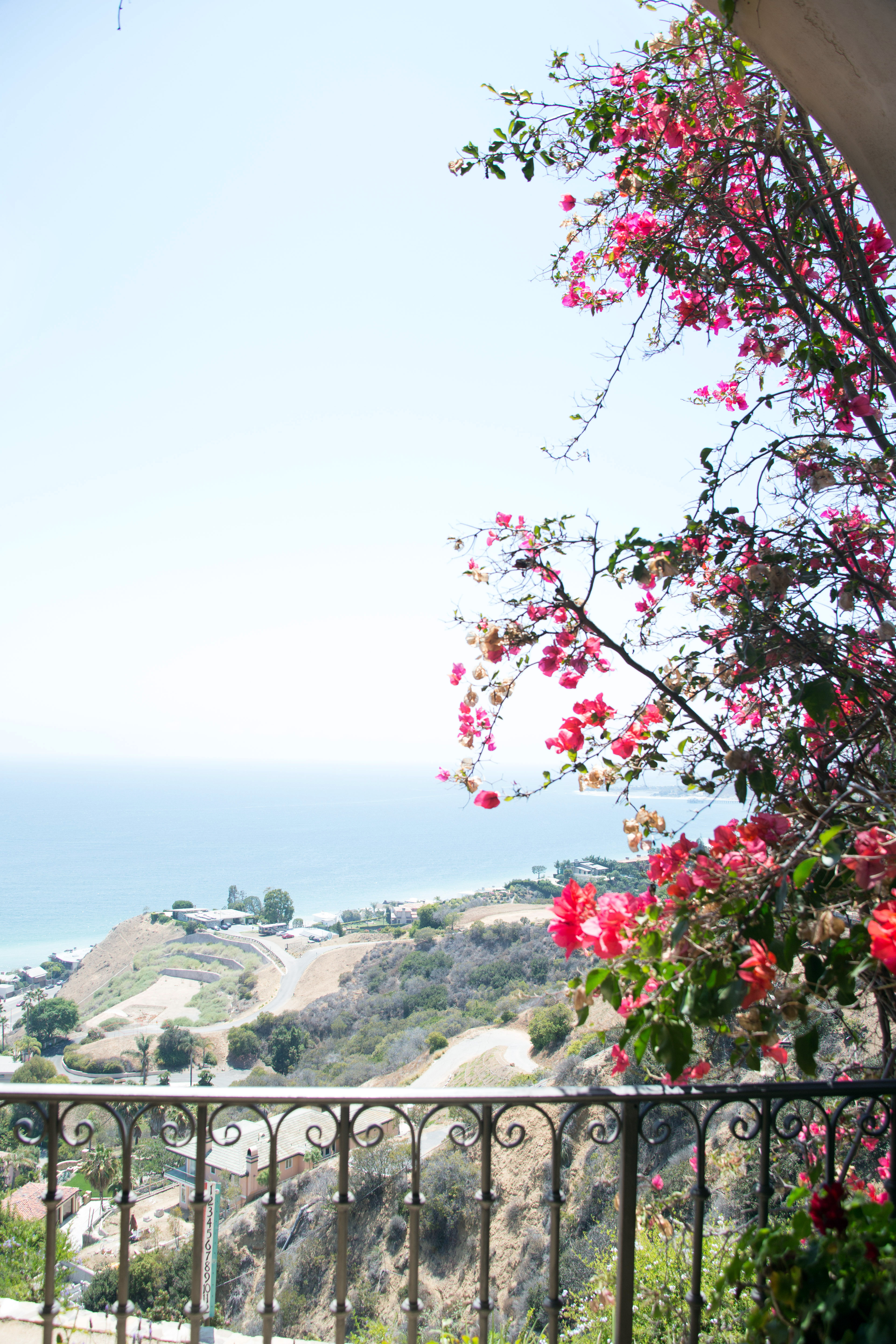 Malibu Afternoon Soiree - Good Gracious! Events