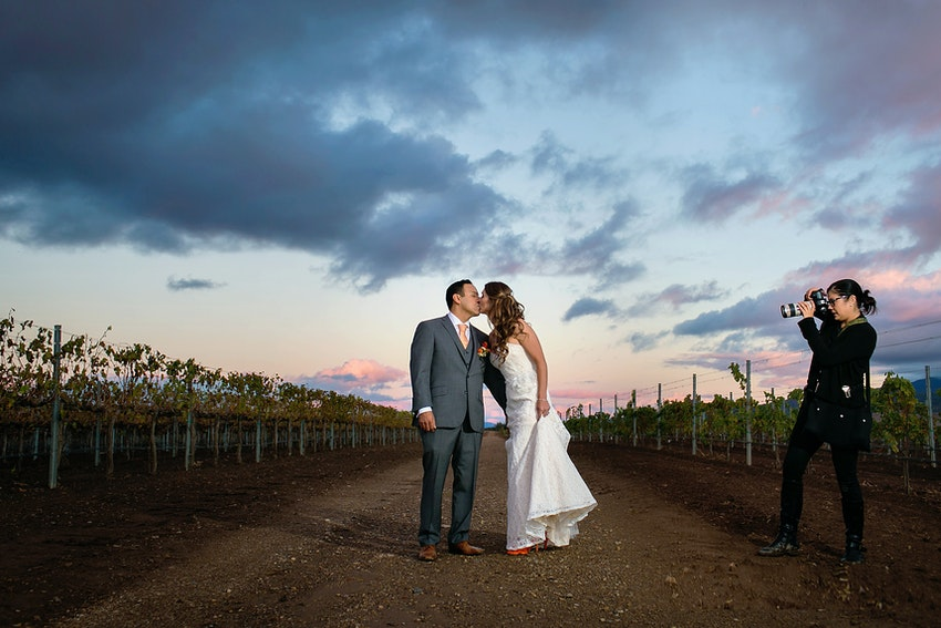 bride and groom in vineyard at sunset