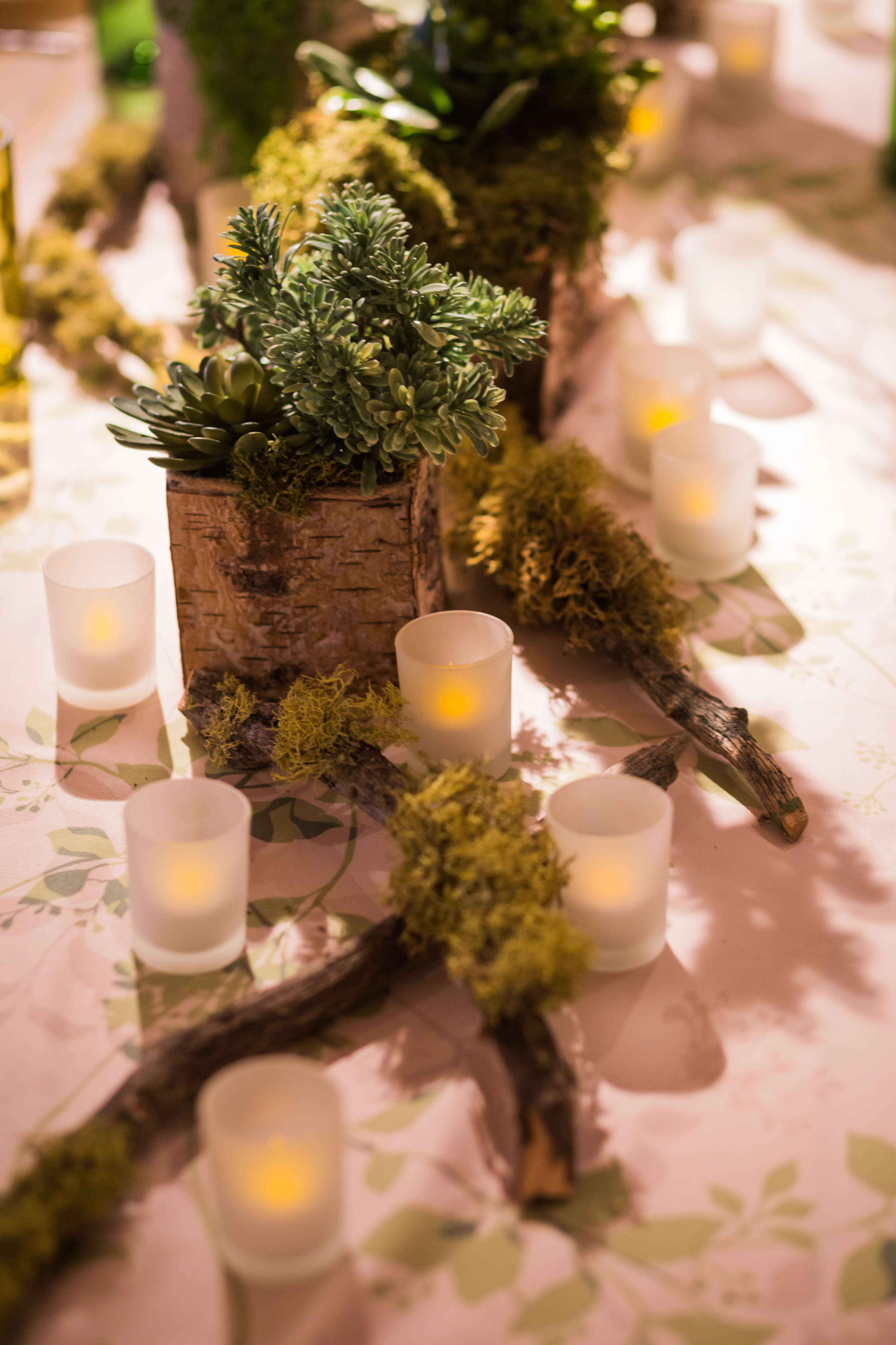 Out of the Woods Brunch - Creative Coverings