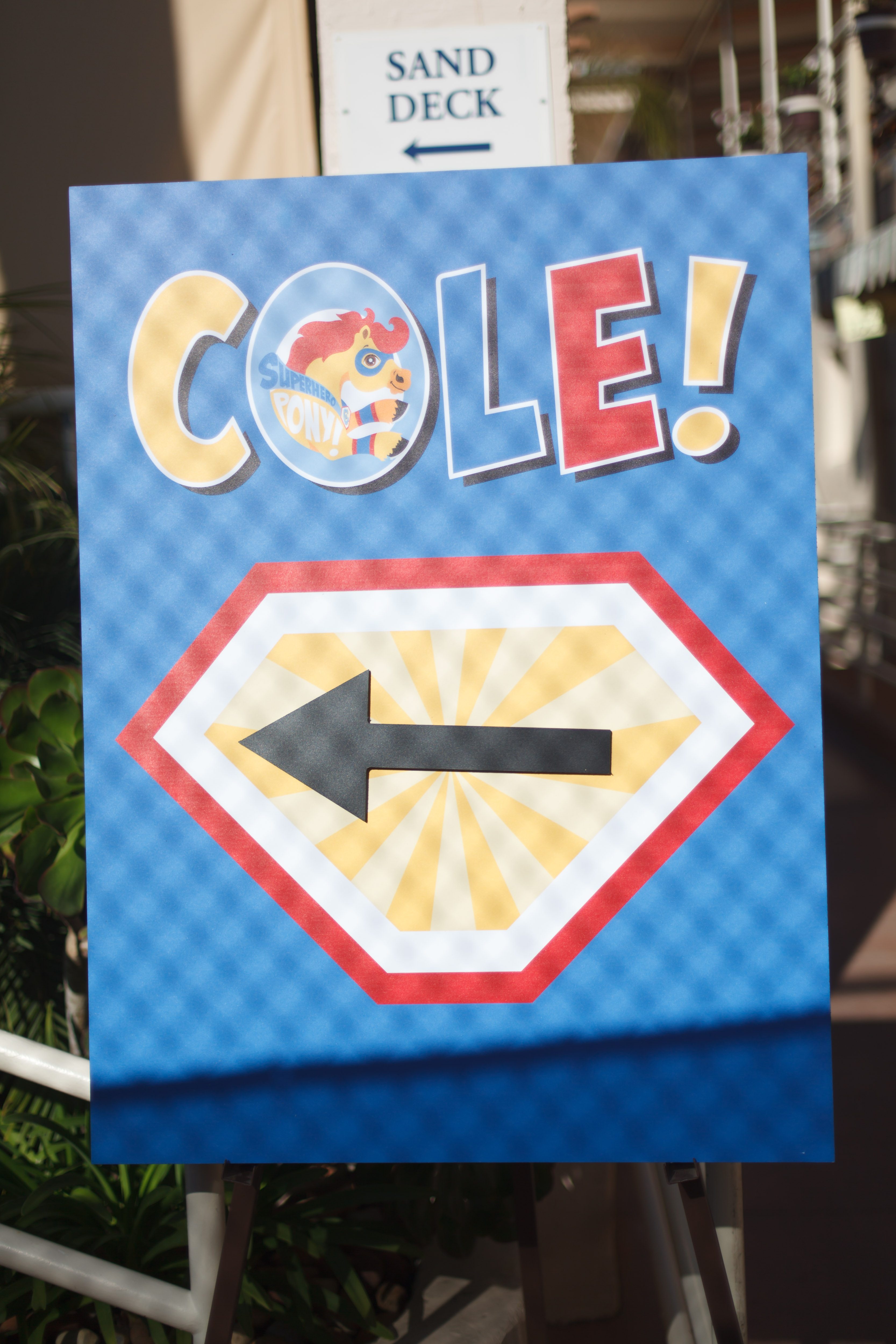 Cole's Rodeo 3rd Birthday - Geffen Events