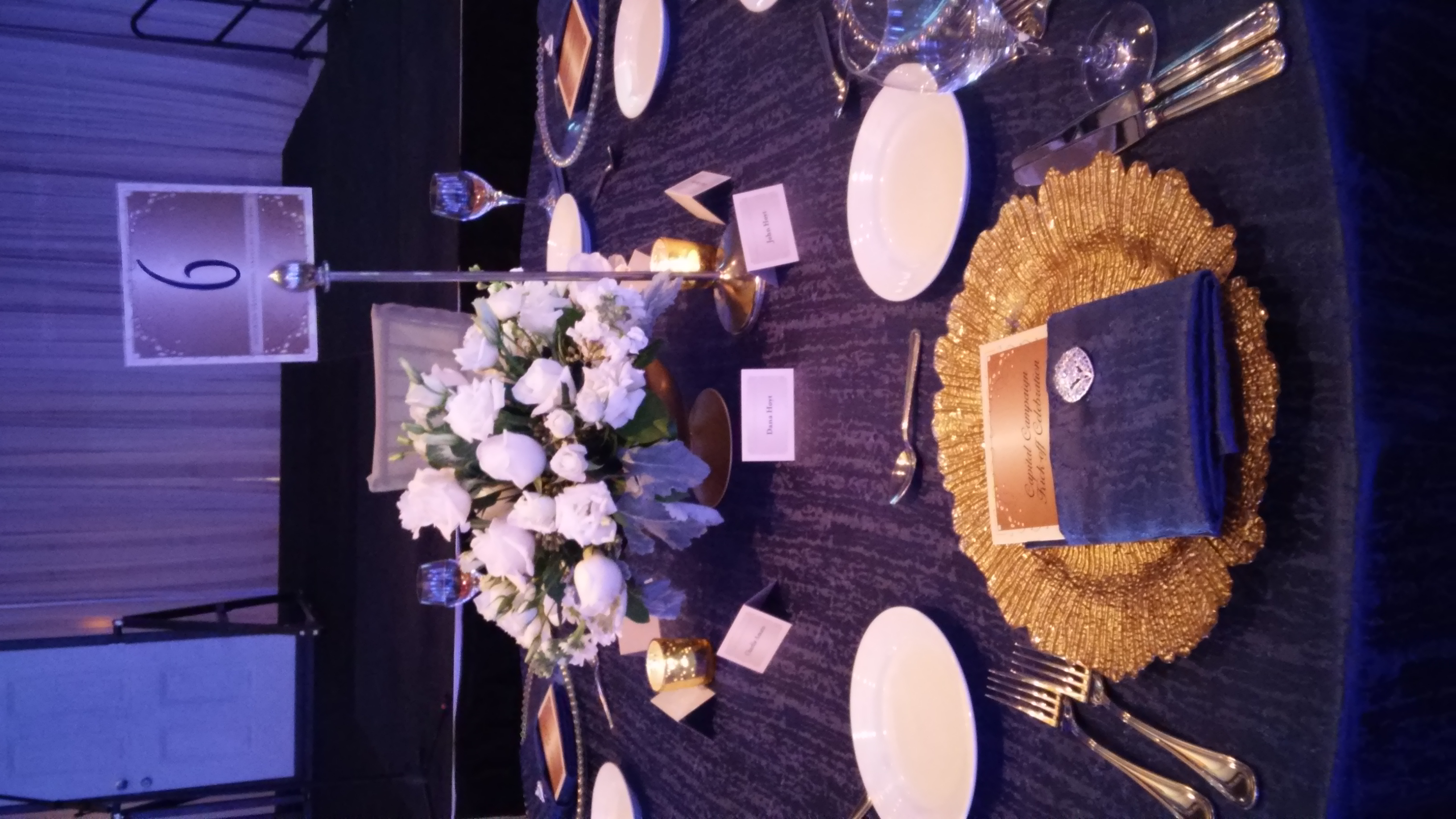 Donor Gala - Magic Moments Parties and Events