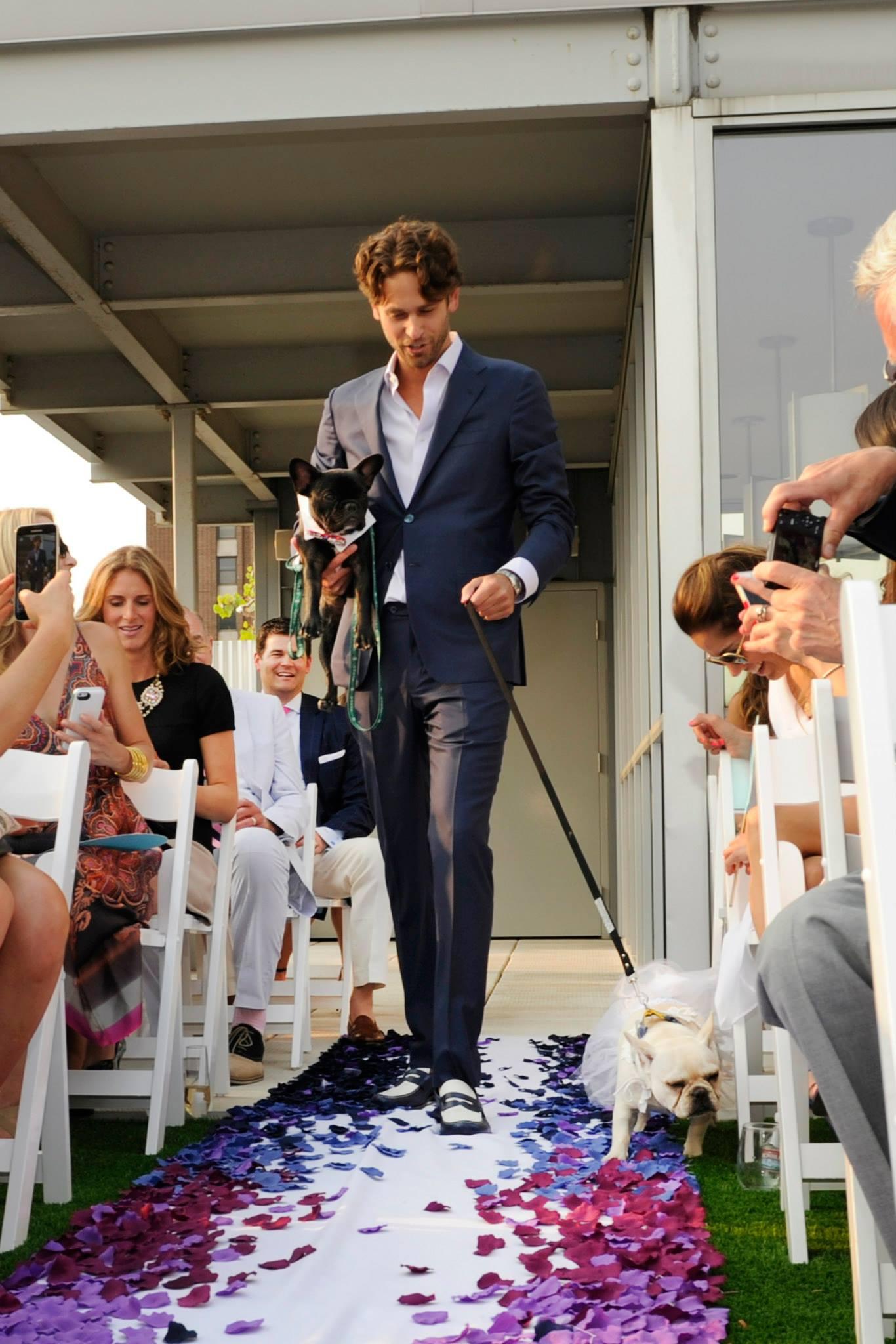 Surprise Rooftop Wedding - Rachel De Marte Events