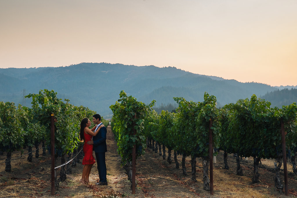 A Napa Wedding with Indian Flare - Cole Drake Events