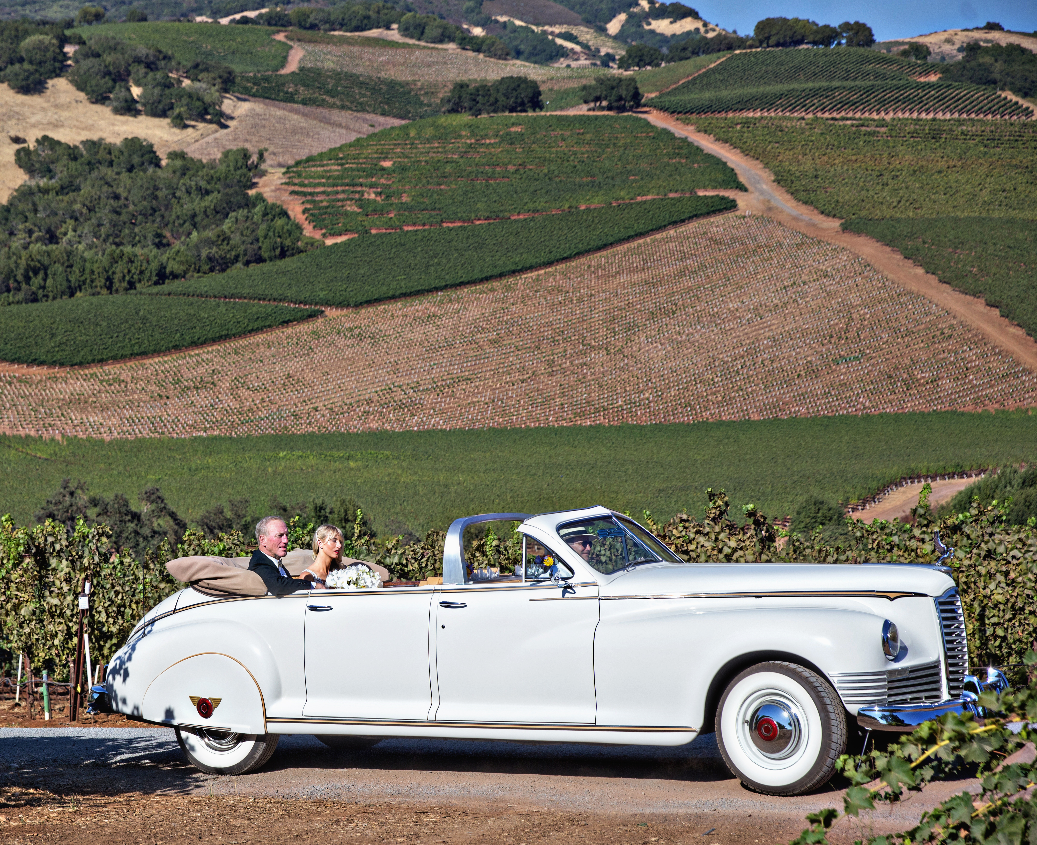 Classic Sonoma Valley Wedding - Cole Drake Events