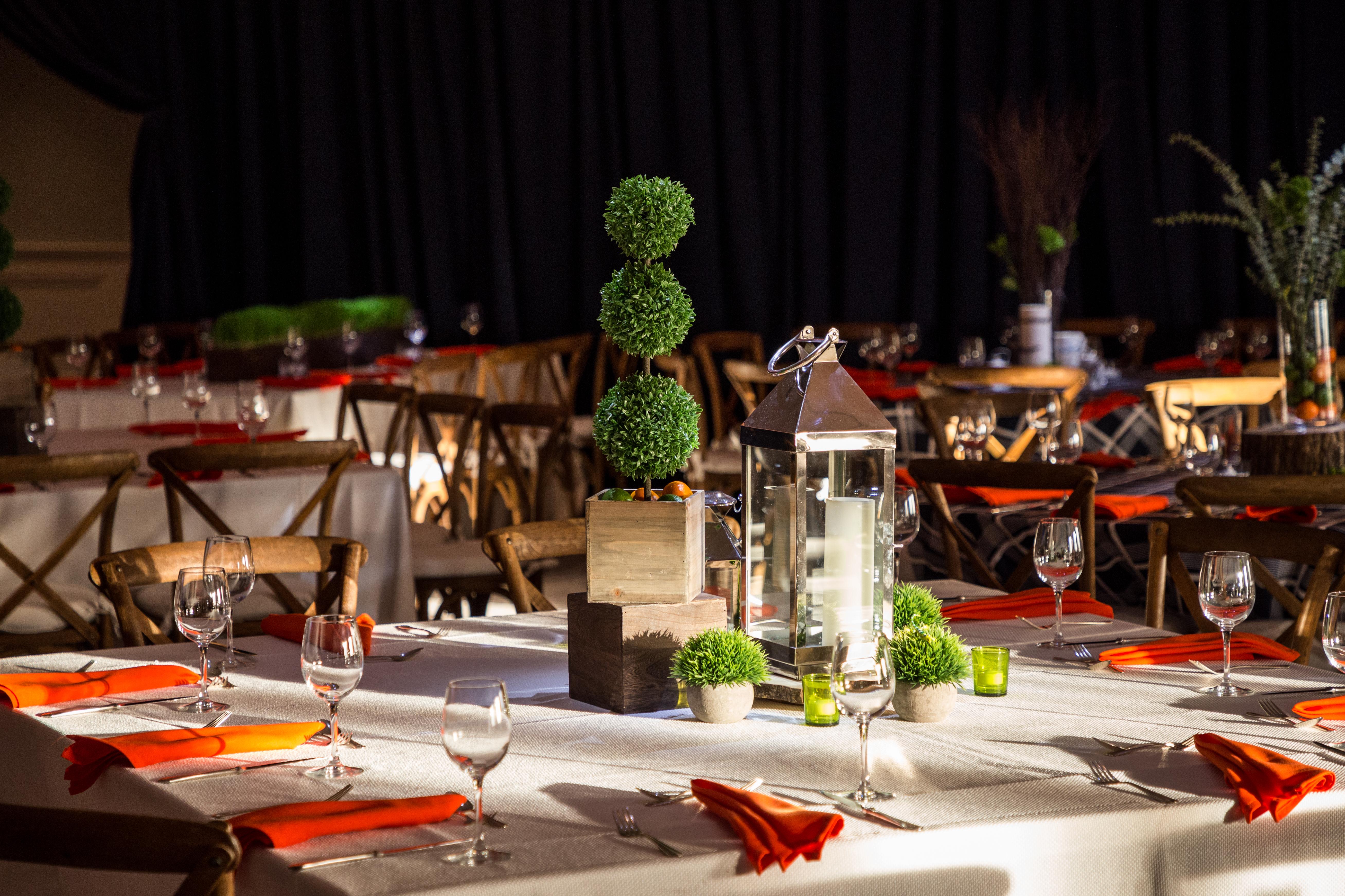 Indoor Backyard Picnic - iSparkleEvents