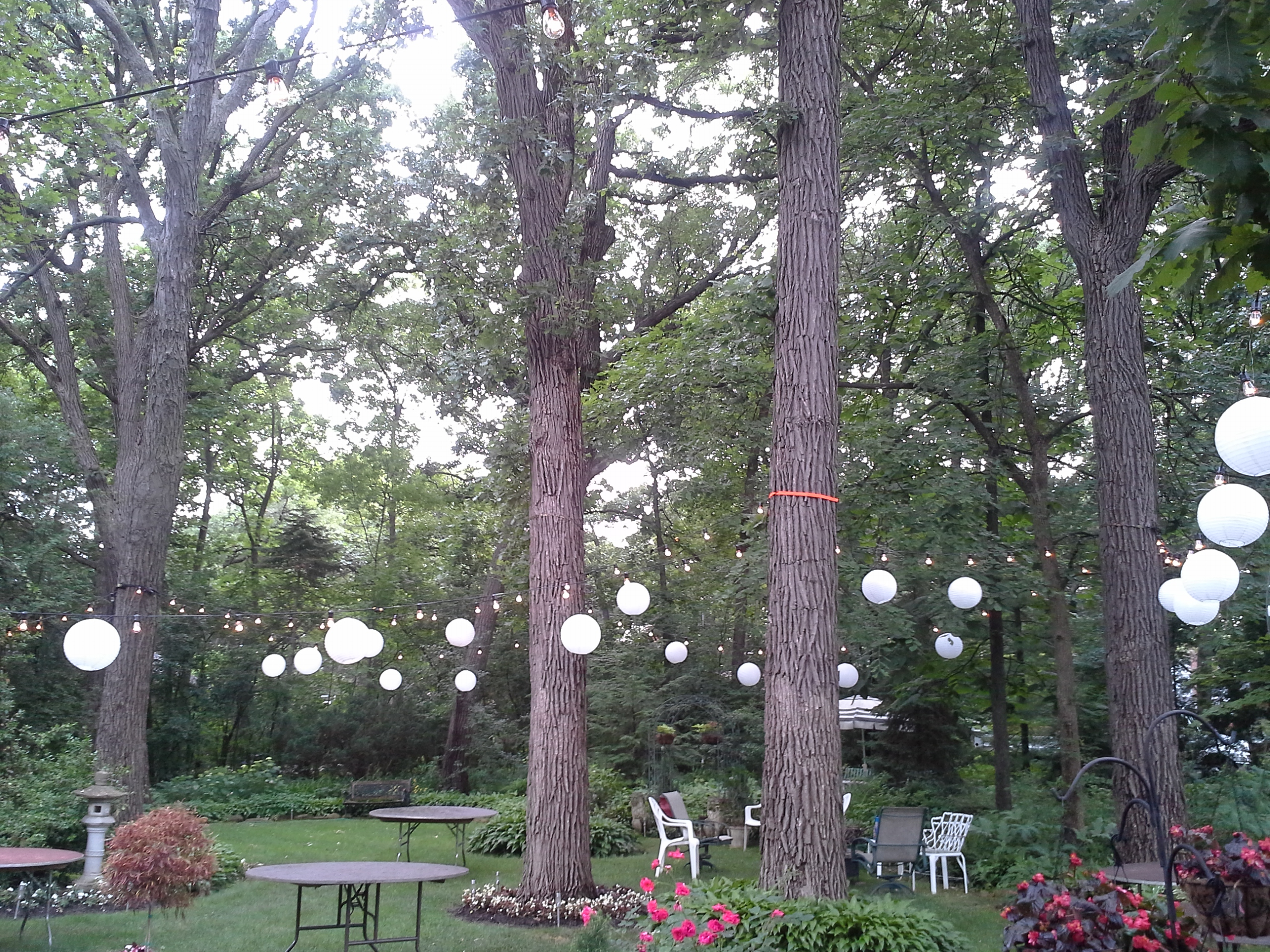 Cafe Lights and Paper Lanterns at a private residence