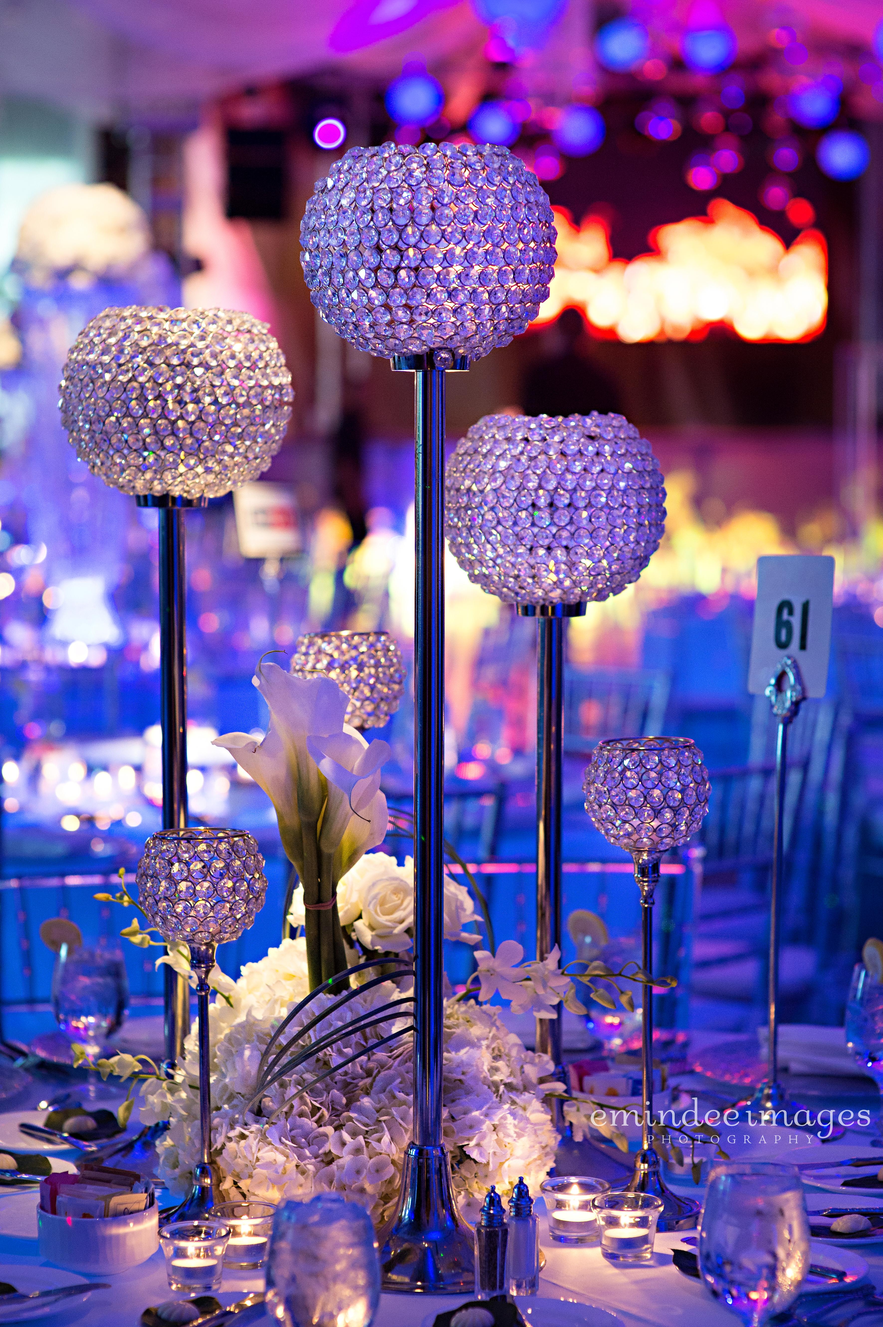 """Fire & Ice"" Charity Gala - Daniel Events"