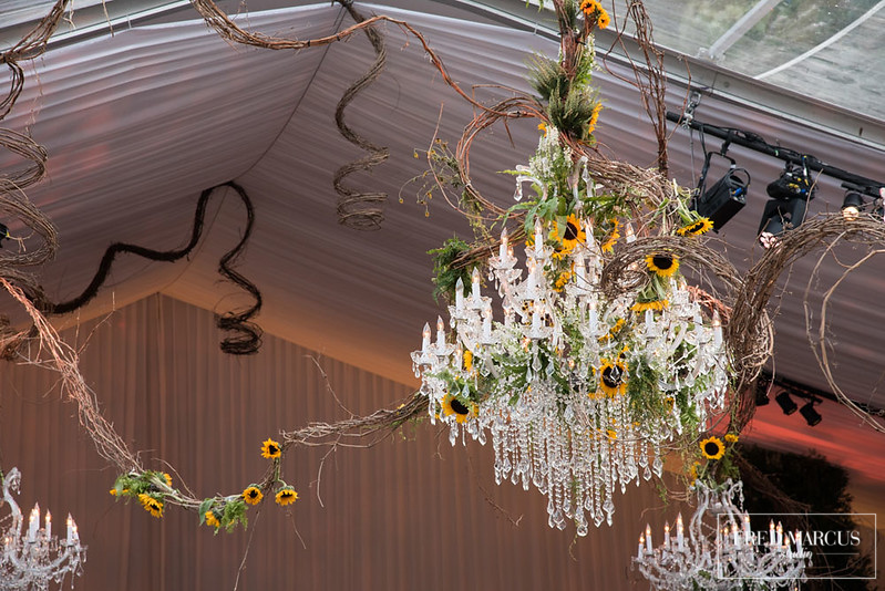 A Sunflower Soiree - The Crystal Plaza