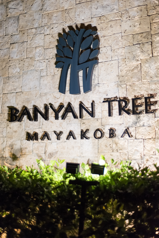 Romantic Resort Wedding - Banyan Tree Mayakoba