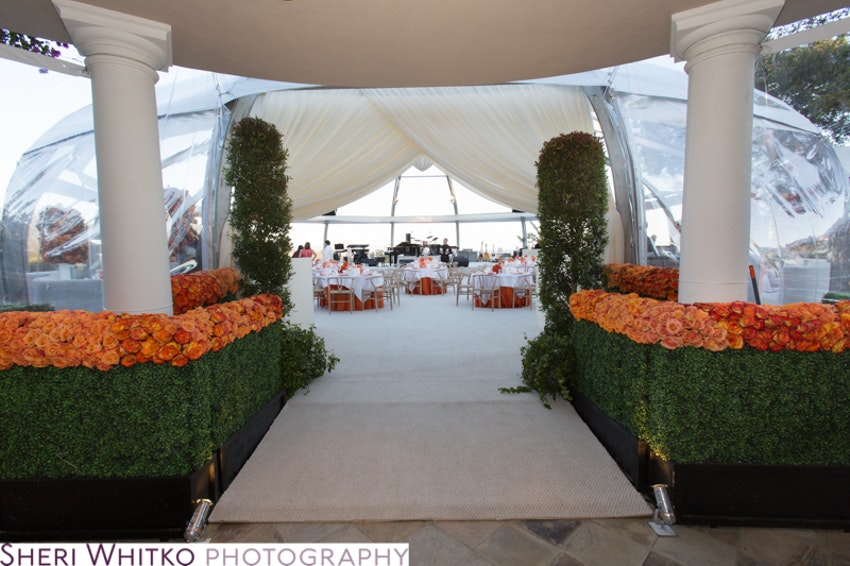 The dramatic entrance with a floral walkway leading into the main tent where the dinner portion of the evening took place.