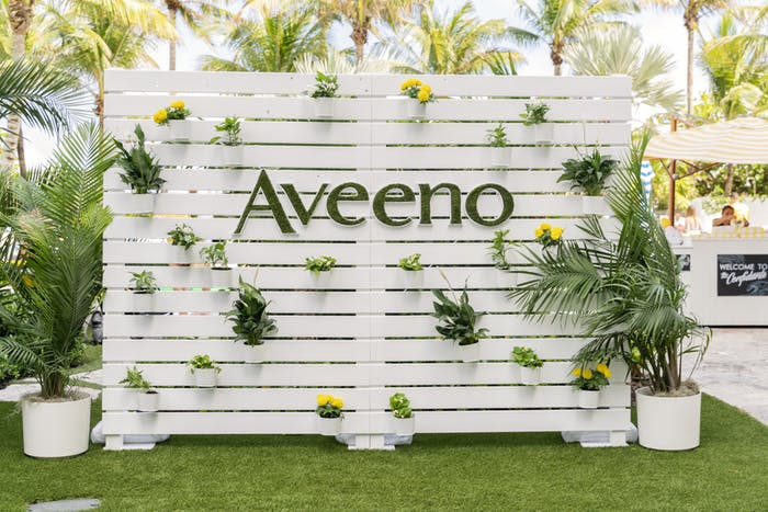a palette backdrop is painted white. Succulents and plants are hung throughout and palm trees in the background.