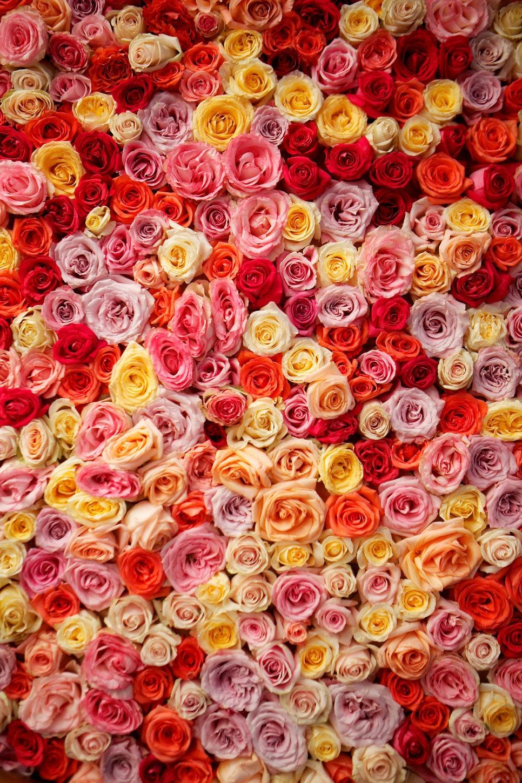 Photo 63aeaaad bfa2 4ee3 9b14 35f584fa9b89.jpg?ixlib=rails 2.1