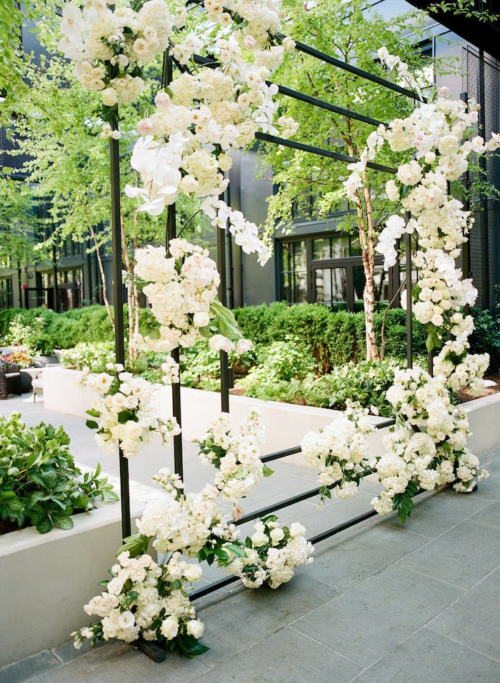 White orchids contrasted with greenery