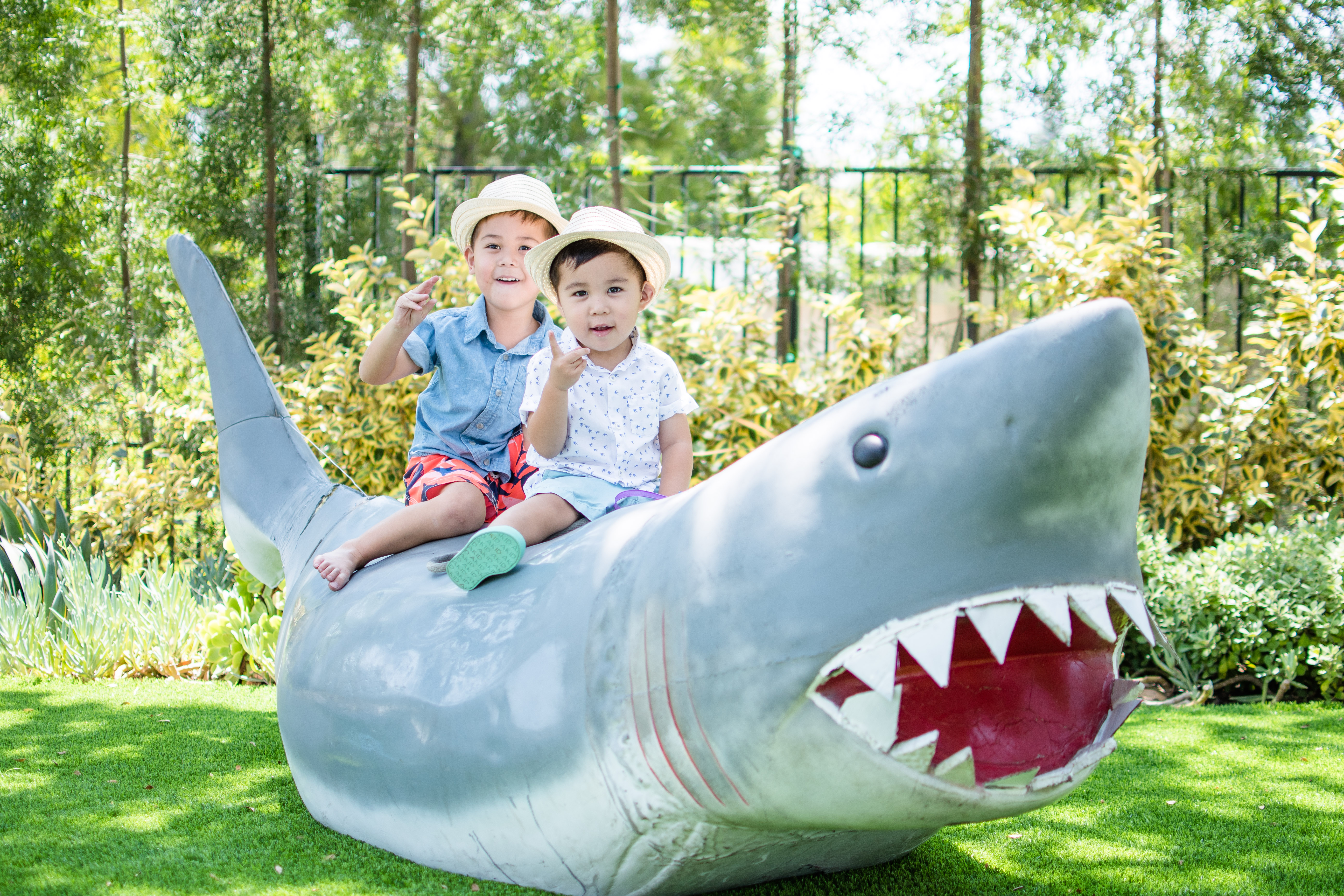 Shark Attack 4th Birthday Party - Wife of the Party
